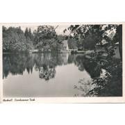 Viešvilė iki 1940 m.